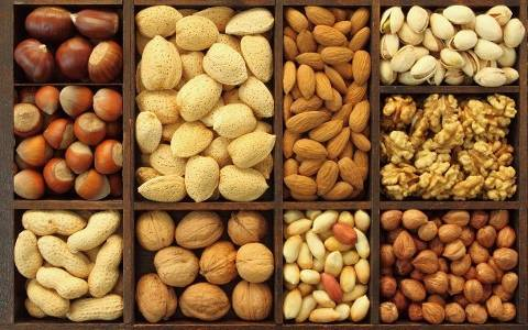 nuts kernels wholesale